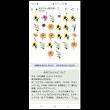 Dc9994b38532243897596baf126c51ff