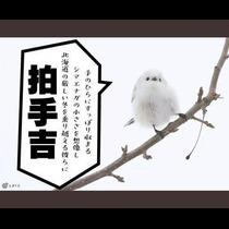 ひな 旭川市 3条通のラウンジ Kirameki(キラメキ)