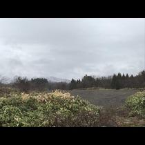浜滝 れいら|函館市 本町のスナック|Liebe(リーベ)